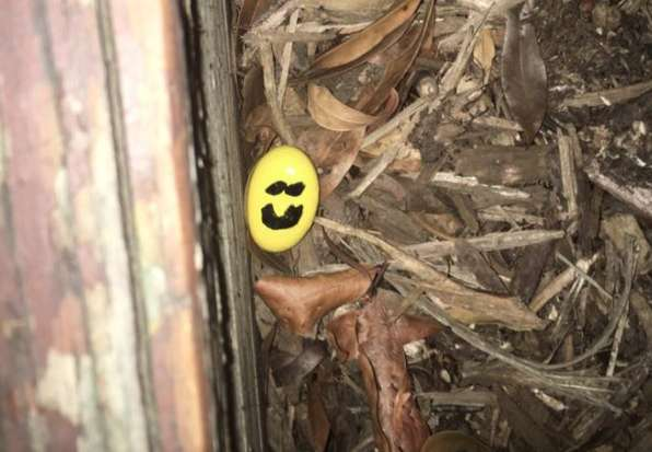 Smiley face rock hidden in Fairlington (photo courtesy Jennifer Pearce/Facebook)