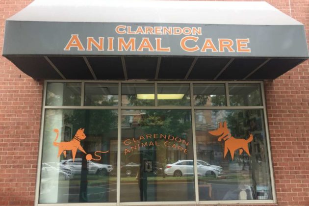The front of the current Clarendon Animal Care space