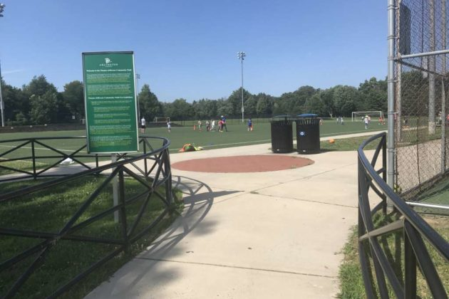 The fields would be replaced with synthetic turf if the County Board approves the project