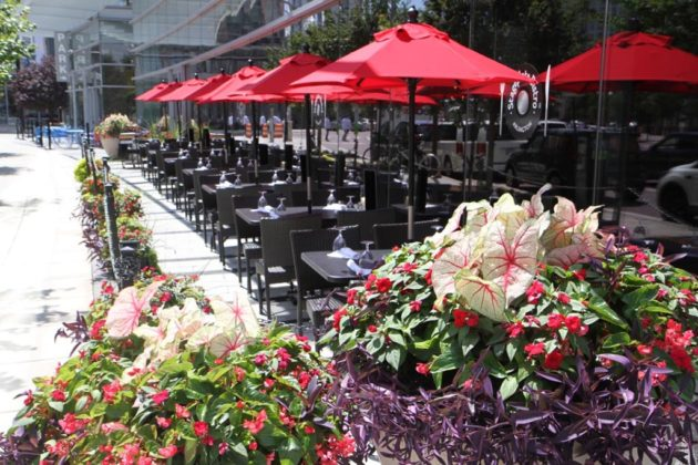 The patio faces N. Glebe Road in Ballston