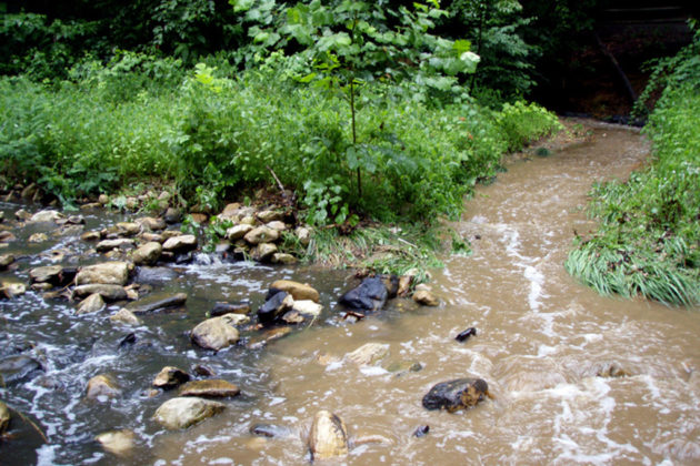 It will create a new natural stream channel and flood plain connection (photo via Arlington County)