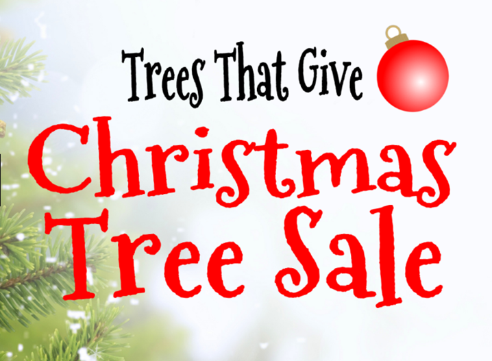christmas tree sales - Sales On Christmas Trees